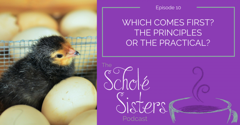 SS #10: Which Comes First? The Principles or the Practical?