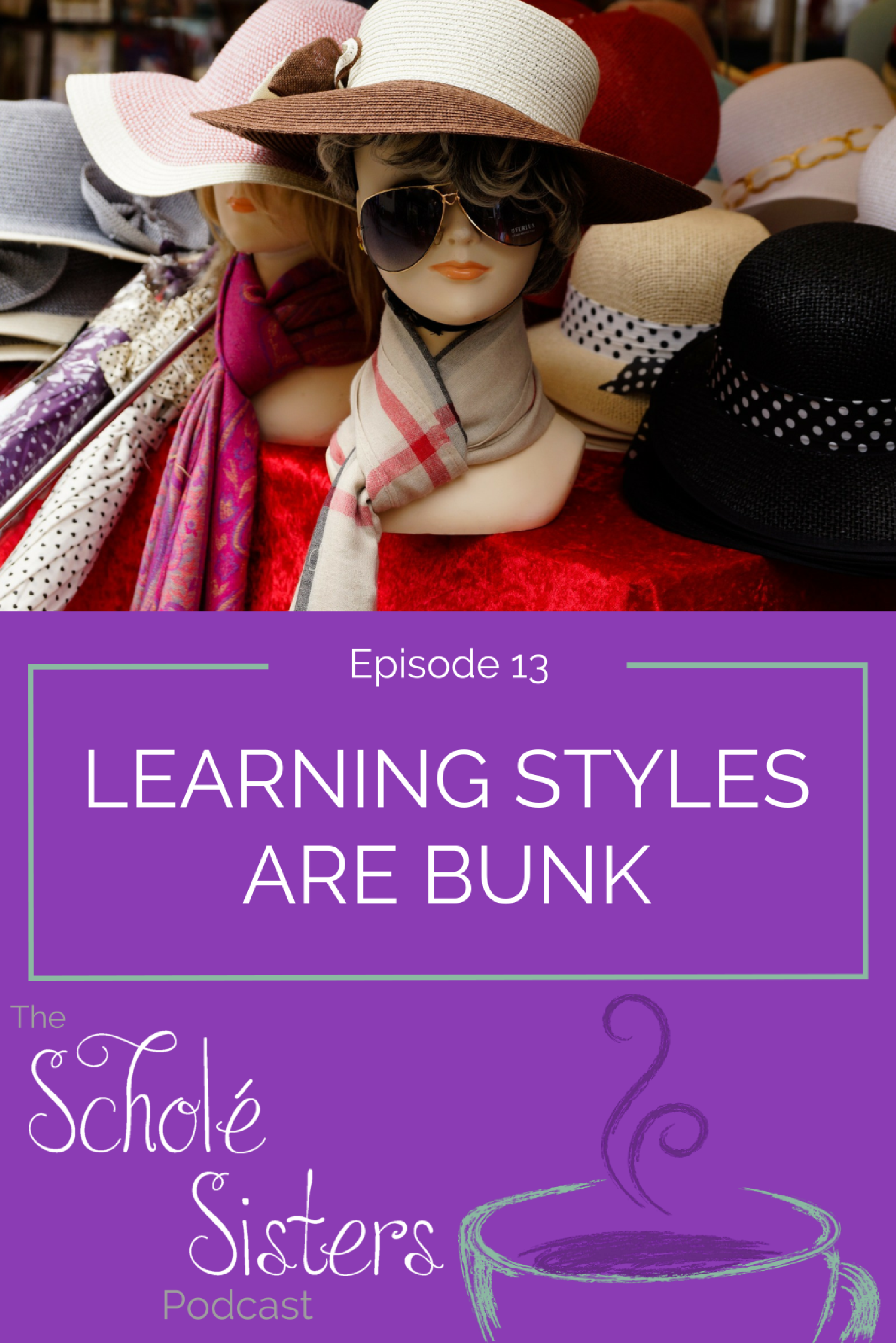 Pam and Brandy discuss learning styles and that there is no scientific evidence whatsoever to back them up. (Pam is trying to get us into trouble.)
