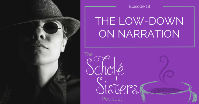 SS #18: The Low-Down on Narration