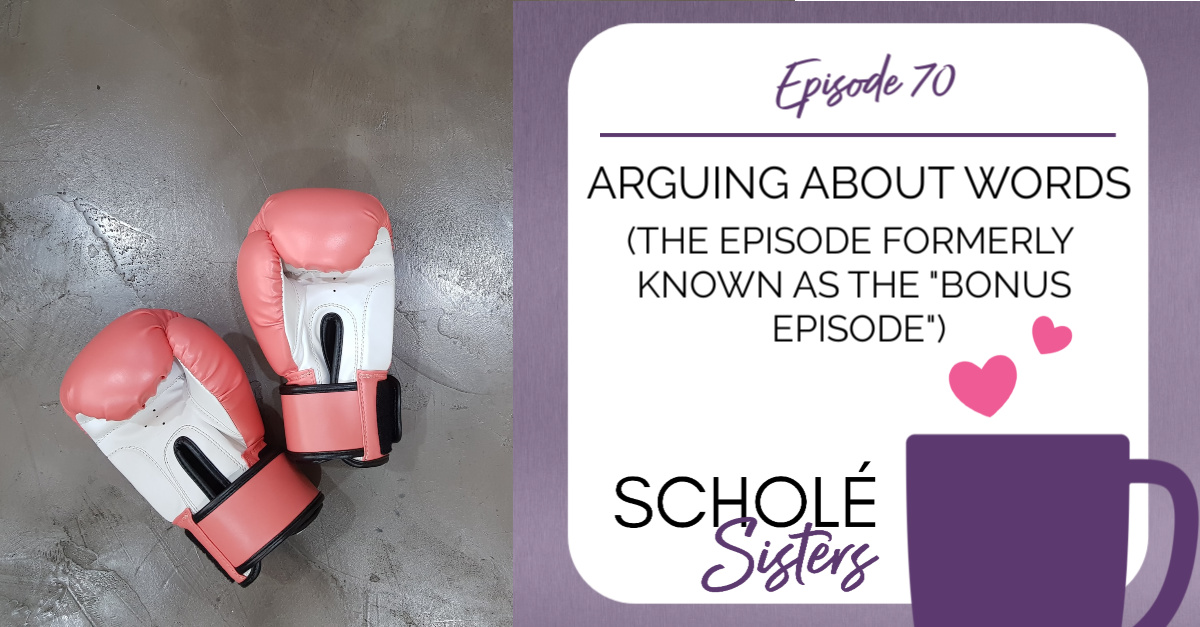 SS #70: Arguing About Words (The Episode Formerly Known as the Bonus Episode)